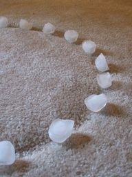 Use ice-cubes to lift out indentations made by furniture on your carpets.