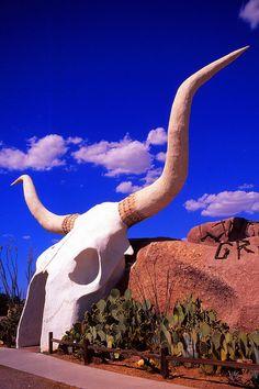 Longhorn Grill.........Amado, Arizona