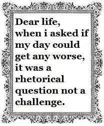 Dear life, when I asked if my day could get any worse, it was a rhetorical question not a challenge.