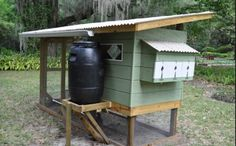 Chicken coop with a rain water catching system.