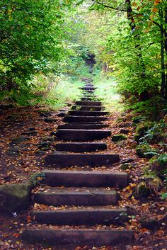 the steps I took to get moving when I began a career as a freelance writer. 5 steps that helped me get my business off the ground. Outdoor Steps, Outdoor Fun, Landscape Stairs, Garden Stairs, Stairway To Heaven, Aesthetic Photo, Outdoor Projects, Pathways, Stairways
