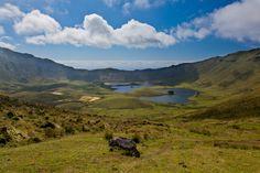 Caldeirão - Landscape, Azores, Portugal by Luis Godinho