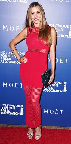 Sofia Vergara worked her curves, naturally, at the Hollywood Foreign Press Association's Grants Banquet in a red-hot block mesh paneled bodycon dress, accessorizing with a bangle, a black bejeweled clutch, and silver sandals.