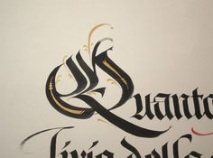 """""""Q"""" - Luca Barcellona - Calligraphy & Lettering Arts"""