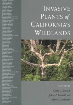 Invasive plants of California's wildlands (2000) / edited by Carla C. Bossard, John M. Randall, and Marc C. Hoshovsky.  Carla Bossard is a professor of Biology.