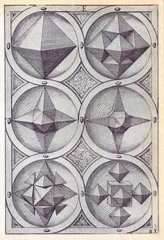 variations on an octahedron) - Perspectiva Corporum Regularium - Wenzel Jamnitzer 1568 Solid Geometry, Geometry Art, Sacred Geometry, Platonic Solid, Psy Art, 3d Prints, Sacred Art, Storyboard, Geometric Shapes