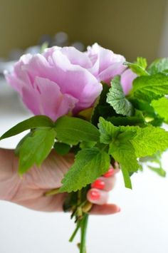 Herbaceous peonies may not be in bloom yet, but their cousins, the tree peonies, are showing off already. Tree peonies boost even larger blooms than the perennial garden favorite and can be propagated by layering. Bring them indoors to create mini bouquets in just a few minutes.