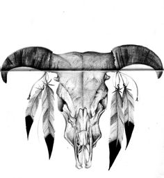 Bull Skull with feathers