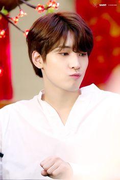 Woozi, Mingyu Wonwoo, Seungkwan, Seventeen Memes, Seventeen Wonwoo, Seventeen Debut, Hip Hop, Won Woo, Seventeen Wallpapers