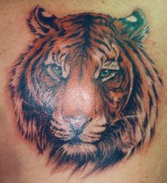 Tiger Tattoos - Tattoos.net 8531 Santa Monica Blvd West Hollywood, CA 90069 - Call or stop by anytime. UPDATE: Now ANYONE can call our Drug and Drama Helpline Free at 310-855-9168.