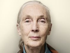 Jane Goodall - 80 on 4th April 2014. In February 1935, the year of King George V's silver jubilee, a chimpanzee at London Zoo called Boo-Boo gave birth to a baby daughter. A couple of months later, a little blonde-haired girl was given a soft-toy replica of the zoo's new arrival to mark her first birthday. This was Jane Goodall's first recorded encounter with a chimp.