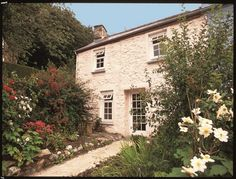 """This pretty pink holiday cottage is in the old fishing village and harbour of Lower Town, Fishguard.  The cottage is just a few minutes walk from the quay and slipway, where there are excellent launching facilities for sailors, windsurfers etc.  Local fishermen often provide fishing trips or you can go and listen to tales of """"the one that got away"""" in the local pub (The Ship Inn). More info: http://www.welsh-cottages.co.uk/search/pty_search2.php?propref=151"""