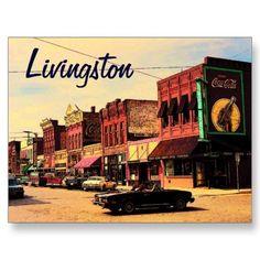 Livingston, MT