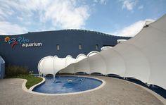 Palma Aquarium. Covers for the new aquarium.
