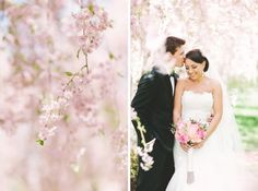 Spring Wedding perfect dreamy backdrop