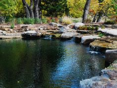 Excavated and existing rocks form a cradle for this elaborate watering hole by  TotalHabitat.com .