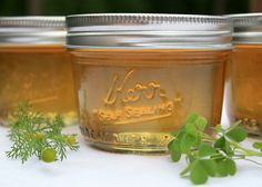 yellow sorrel and chamomile jelly by lilfishstudios, via Flickr