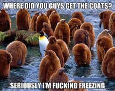 Seriously Guys Where Did You Get The Coats ?