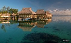 This photo from French Polynesia, Other is titled 'Moorea Overwater Bungalows'. Overwater Bungalows, French Polynesia, To Go, Europe, Cabin, France, House Styles, Places, Lugares
