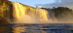 Crean el Parque Nacional número 44 en la región Caura | Últimas Noticias