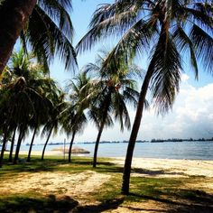 East Coast Park, Singapore   --> eat crab here (there are different restaurants) (chilli crab or pepper crab)