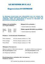 GAYRAUD DOMINIQUE LE DEVENIR DU COS 13 AOUT 2014