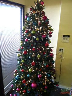 Global Syn-Turf Christmas spirit