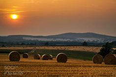 Memories of summer  by magermanuela. Please Like http://fb.me/go4photos and Follow @go4fotos Thank You. :-)