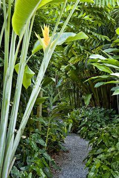 Raymond Jungles - Lazenby Garden