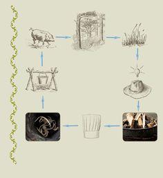Dan Diagram - Recipe for happy pigs | Blue Hill Farm