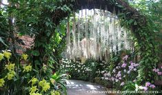 Onna, Okinawa | Tropical Dream Center - Motobu Okinawa - Ocean Expo Park