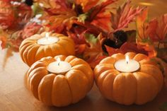 Mini pumpkins as tea light holders. Love these! #halloween #homedecor #candles #pumpkins #fall Pumpkin Candles, Diy Pumpkin, Pumpkin Tea, Fall Candles, Pumpkin Lights, Taper Candles, Tea Light Candles, Diy Candles, Pumpkin Crafts