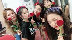 Red Velvet hall tour in Fukuoka, Japan Seulgi, Red Velvet アイリーン, Red Velvet Irene, Red Valvet, Star Wars, Red Rooms, Red Queen, Kpop Girls, Korean Girl