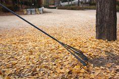 Tree rake