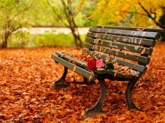 Resultado de imagem para poemas sobre o outono