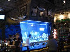 Prism shaped aquarium / fish tank