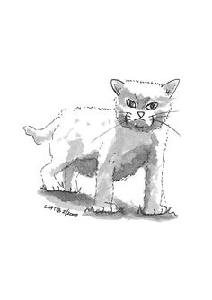 Standing kitten drawing  black and white A5 illustration by liatib