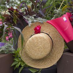 Garden chic on #mossmountainfarm #crescentgarden #roses #joy #sharethebounty