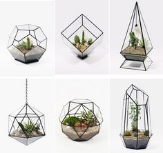 SALE Dodecahedron Large Geometric Glass Terrarium geometric glass plant terrarium