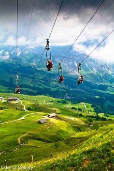 Zip-lining, Grindelwald, Switzerland