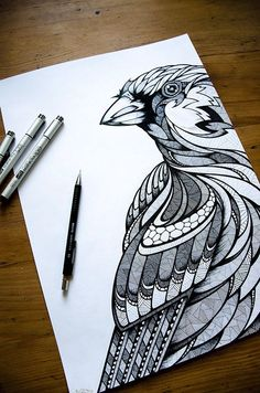 LassRollen // Animals of Berlin on Behance // Sparrow by Andreas Preis // www.designerpreis.com
