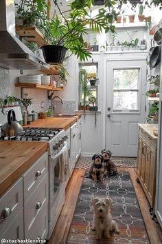 Home Decor Kitchen, Interior Design Kitchen, Kitchen Plants, Cozy Kitchen, Bohemian Kitchen Decor, Eclectic Kitchen, Vintage Kitchen Decor, Bohemian Decor, Interior Decorating