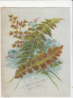 I Wish You A Prosperous New Year Ferns Flowers Victorian Card C 1880s | eBay