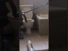 8-foot poisonous snake found inside a toilet is the stuff of nightmares - http://blog.clairepeetz.com/8-foot-poisonous-snake-found-inside-a-toilet-is-the-stuff-of-nightmares/