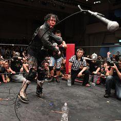 Japanese Wrestling, Professional Wrestling, Magic, Concert, Awesome, Concerts