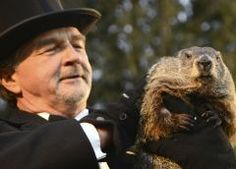 La marmota más famosa predice seis semanas más de invierno
