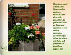 Seite7: Manchmal macht es Spaß einen Blumentopf zu gewinnen, besonders wenn dieser selbst gemacht ist. Es geht nicht darum der Sieger von irgendwas zu sein, sondern demjenigen Anerkennung zu zollen, der sich so viel Mühe und Arbeit mit der Gestaltung gegeben hat. Coffee Table Books, Plants, Pictures, Flowers, Plant, Planets