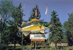 "* World's Largest Walleye---""Wally the Walleye"" is located in Garrison, North Dakota (Walleye capital of the world) in the Lake Sakakawea area."