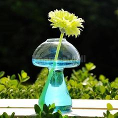 1pc Wall Glass Hanging Plant Hydroponic Terrarium Flower Vase Pot Candle Holder