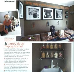 LOVE this idea of a dog room! One day I will have this!!
